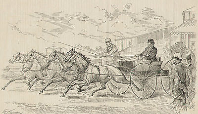 Horse And Buggy Matched Teams Friendly Race 1882 Original Antique Art Print