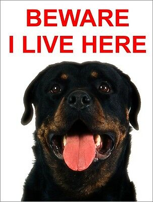 Beware I Live Here Rottweiler Warning Sign