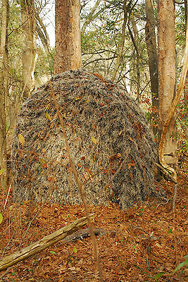 Ghillie Backpack Tent/Blind with Ghillie cover,   Winter White color