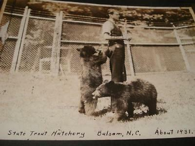 35 Photo's North Carolina Forest Service State Game Refuge ~ Blood Hounds 1930's
