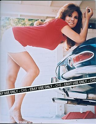 RAQUEL WELCH SEXY!! EARLY COLOR 8x10 PHOTO LEGGY POSE!