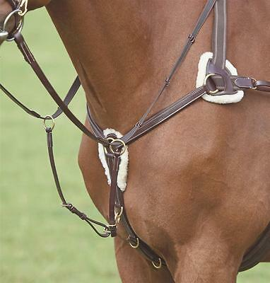 Shires salisbury 5 five point leather breastplate and martingale