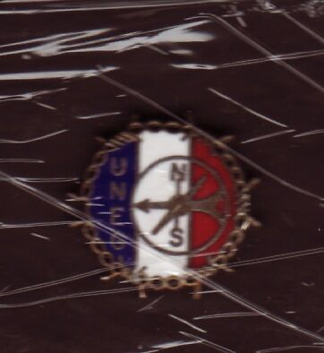 official Pin's Badge UNEG