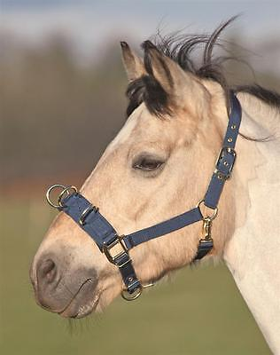 New Shires Strong Economy Nylon Lunge Cavesson Navy Pony, Cob, Full