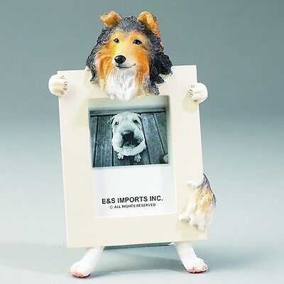 Sheltie  ~  Picture Frame #37