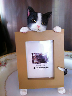 Cat ~ Black & White Shorthair  ~  Picture Frame  #3