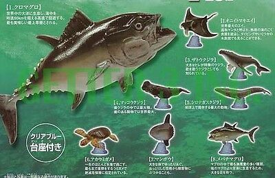 JAPAN EPOCH WORLD LIFE JOURNEY SEA OCEAN CREATURE RAY TURTLE WHALE FISH GASHAPON