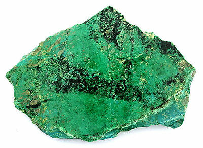 49.7 Gram Chrysocolla Sonoran Slice Slab Cab Cabochon Gemstone Gem Rough B21A100
