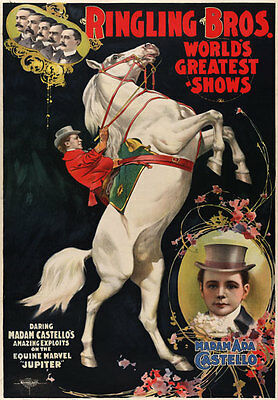 TZ66 Vintage Ringling Horse Riding Circus Carnival Poster A1 A2 A3