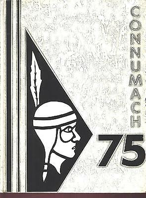Davidsville PA Conemaugh Township High School yearbook 1975 Pennsylvania