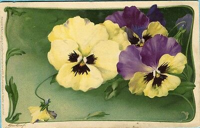G1594 Meissner and Buch postcard 1201 Pansy Flowers, Postally used