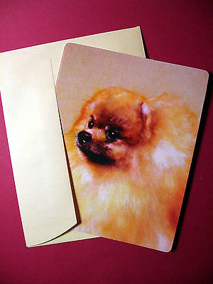 """Pomeranian"" Single Dog Greeting Card - Blank Note Card - sku# 14"