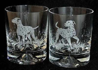 DALMATIAN *DOG GIFT* Boxed PAIR GLASS WHISKY TUMBLER