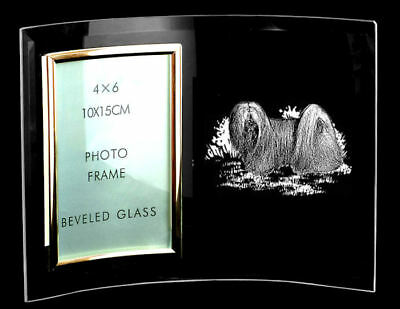 CURVED GLASS PHOTO FRAME ~ with LHASA APSO design  *DOG GIFT*