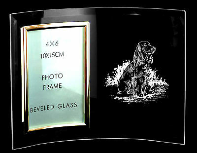 CURVED GLASS PHOTO FRAME ~ with Sitting COCKER SPANIEL *DOG GIFT*