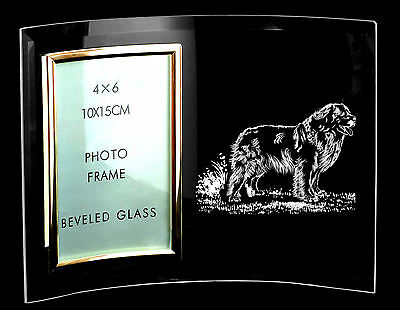 LEONBERGER (Standing) GIFT ~  Boxed 6 x 4 PHOTO FRAME  *DOG GIFT*