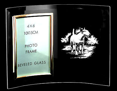 6 x 4 PHOTO FRAME ~ with BULL TERRIER  *DOG GIFT*