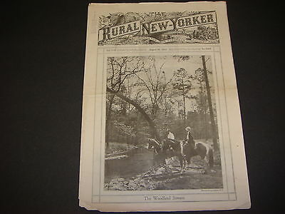 Rural New Yorker, August 19,1933, The Woodland Cover, Great Ads/Illustrations