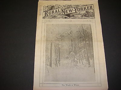 Rural New Yorker, January 28, 1933, The Woods In Winter, Great Ads/Illustrations