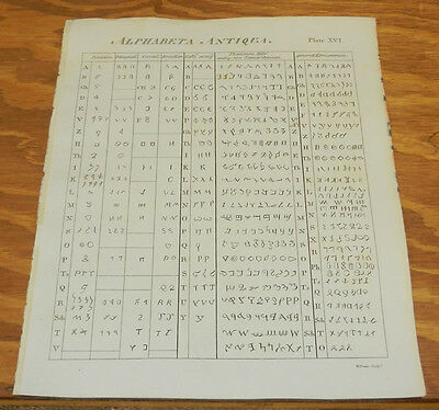 1817 Antique Print/ALPHABETA ANTIQUA/Encyclopedia Britannica, 5th Edition