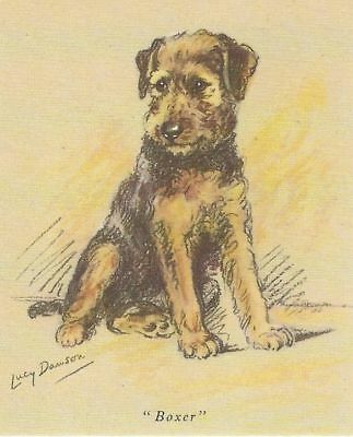 Airedale Terrier Puppy - MATTED Dog Print - Lucy Dawson