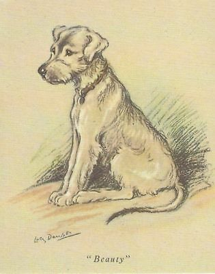 Irish Wolfhound Puppy - MATTED Dog Print - Lucy Dawson