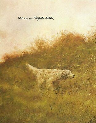 English Setter - Vintage Dog Print - Poortvliet