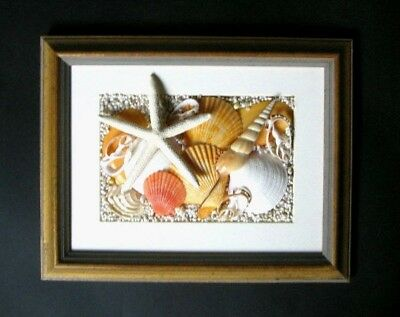 Original Abstract Sea Shell And Starfish  Art   Wooden Frame
