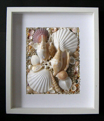 Modern Seashell Art  Wooden Shadow Box With Abstract Shell Design