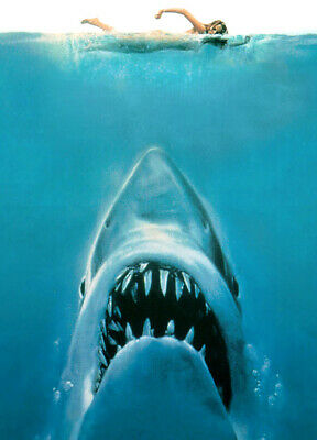 Jaws Classic Movie Poster T-Shirt. Gents, Ladies & Kids Sizes Shark Horror Movie
