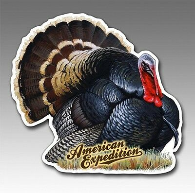 Wildlife Auto/Car/Truck MAGNET--WILD TURKEY--by American Expedition-Made in USA