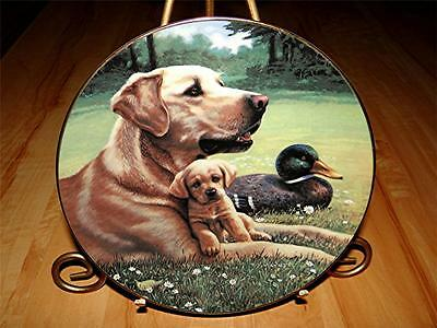 """Like Father Like Son"" A SPORTING GENERATION Yellow Labrador Dog Jim Lamb Plate"