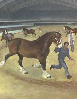 Clydesdale Horse Print - 1951 W. Dennis