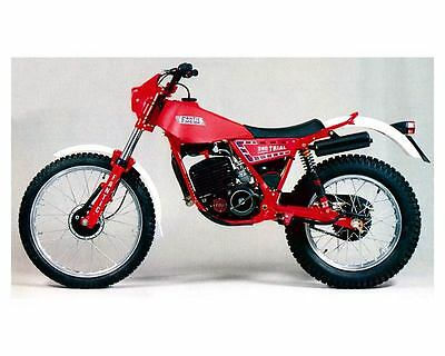 1982 Fantic Motor Trial 240 Motorcycle Photo Poster zc2074-I4K5NC