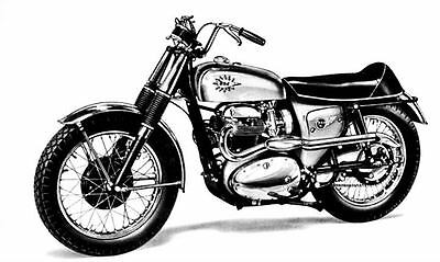 1966 BSA Hornet Motorcycle Photo Poster zc218-281CVO