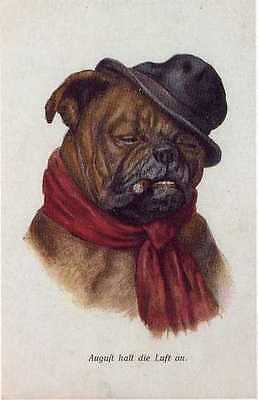 Bulldog w/Cigar L - MATTED Dog Art Print - German / NEW