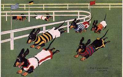 Dachshund Racing L - MATTED Dog Art Print - German / NEW
