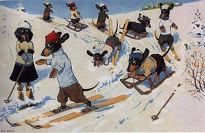 Dachshund Skiing L - MATTED Dog Art Print - German / NEW