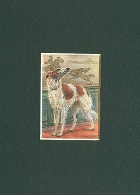 * Borzoi - Dog Art Print - CLEARANCE