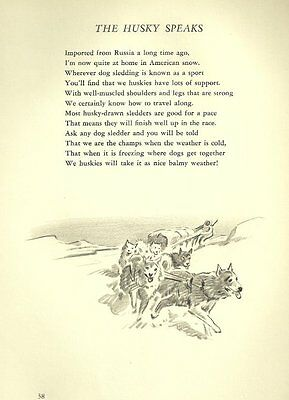 Siberian Husky Illustration and Poem - 1947 M. Dennis