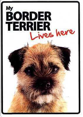 My Border Terrier Lives Here - Fun Sign