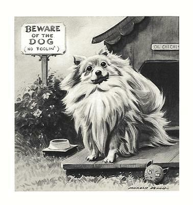 Pomeranian - Morgan Dennis Dog Print - MATTED
