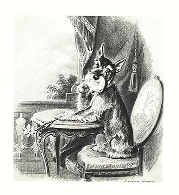 Schnauzer - Morgan Dennis Dog Print - MATTED