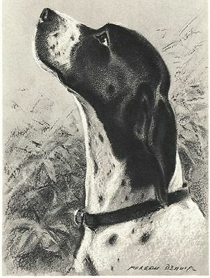"Pointer - Dog Art Print - M. Dennis ""N"""