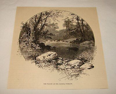 1887 magazine engraving ~ Ireland VALLEY OF THE DARGLE, WICKLOW