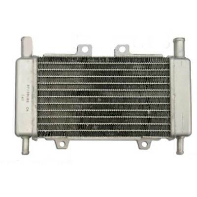Radiatore Gilera Runner Dna 50 Radiator Scooter Piaggio 50 Lc Liquido