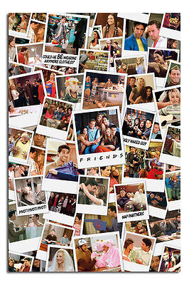 Friends TV Show Polaroids Poster New - Laminated Available