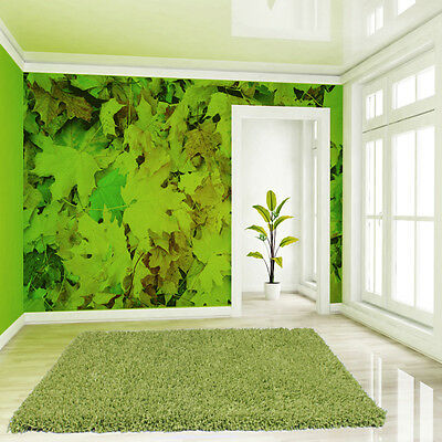 Angel Feather Lime Rug