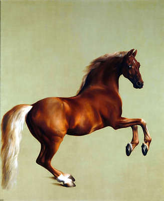 George Stubbs QUALITY CANVAS ART PRINT Whistlejacket Horse Poster - 12x8""