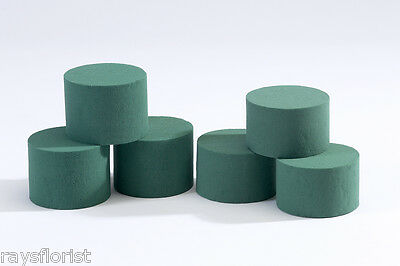 Cylinders Ideal Floral Foam Round Fresh Flowers Smithers Oasis Floristry 8cmx6cm